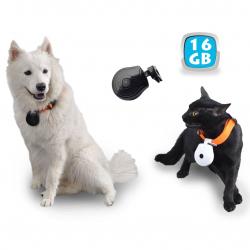Caméra embarquée collier espion chien chat appareil photo USB 16 Go Autres caméras espion YONIS