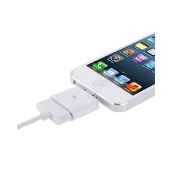 Adaptateur iPhone Dock vers Lightning iPhone 5 iPad mini iPod touch G5